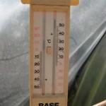 FT1_subtropische Arbeitstemperatur (35°C ca. 12h)
